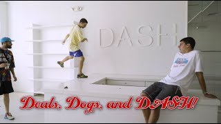 Deals, Dogs, and DASH! S4 Ep9 of The Show by Round Two