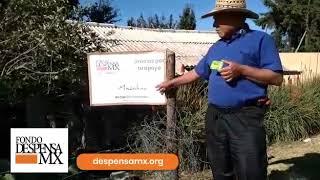 Beneficiaria de la Fundación Amigos de San Cristóbal.