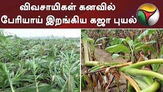 விவசாயிகள் கனவில் பேரியாய் இறங்கிய கஜா புயல் #Rain #GayaCyclone #Weather #GayaCycloneUpdates