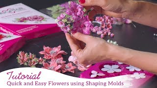 Quick and Easy Flowers using Shaping Molds