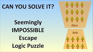 The Seemingly Impossible Escape Logic Puzzle