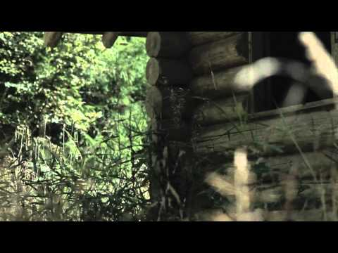 David (Song) by Noah Gundersen