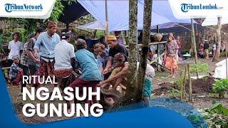 Ritual Ngasuh Gunung, Tradisi Khusus dan Salah Satu Cara Warga Lombok Menjaga Kesucian Alam Rinjani
