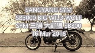 Initial Review: SANGYANG SYM  SB3000 BIG WILD WOLF 三陽 大野狼 SB300