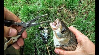 Сигнализация для рыбалки и туризма пенза пензенская область