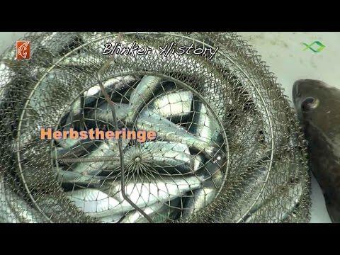 Die Tabletten von den Würmern, in tajlande zu kaufen