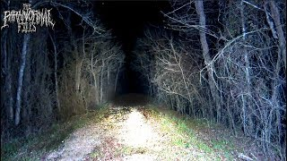 Creepy Sounds Of Possible Cryptid Captured In Woods At Midnight
