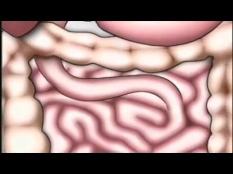Maturo della prostata massaggio porno