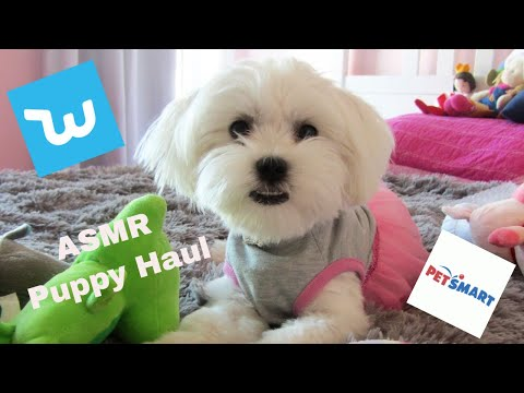 ASMR -  Unboxing Wish And Petsmart - Puppy Haul - Puppy Love - Super Cute 🐶