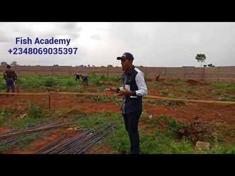 ANAMBRA FISH FARM PROJECT: CONSTRUCTION OF WORLD CLASS FISH FARM-- DAY 1