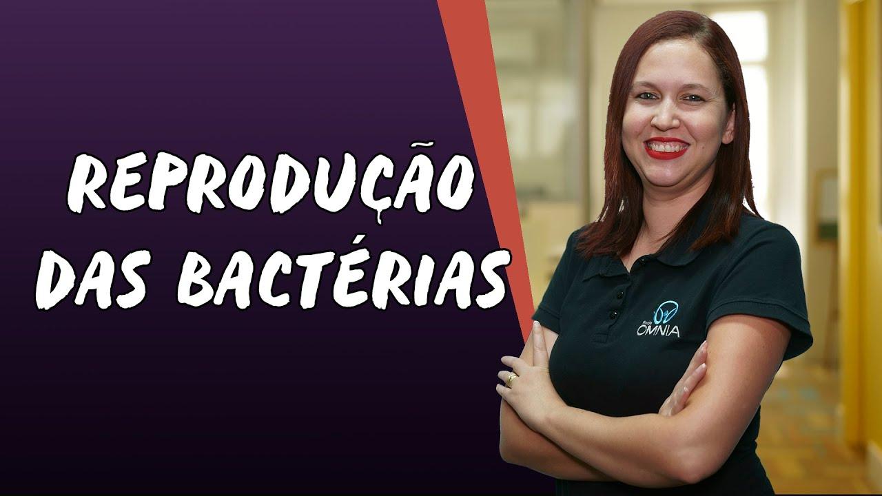 Reprodução das Bactérias
