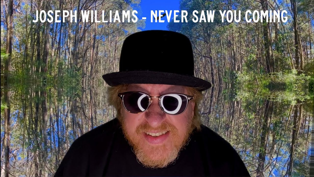 JOSEPH WILLIAMS - Never saw you coming