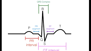EKG/ECG Interpretation (Basic) : Easy and Simple! - Download this Video in MP3, M4A, WEBM, MP4, 3GP