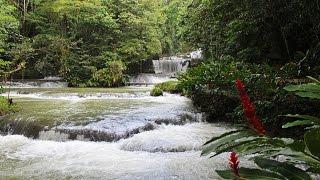 YS Falls and Black River Safari, Jamaica