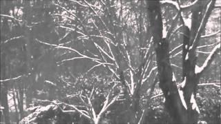 Winter Wonderland - Clay Aiken
