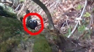 СТРАННОЕ СУЩЕСТВО СЛУЧАЙНО СНЯТОЕ НА ВИДЕО В ЛЕСУ 2018 странное существо в лесу 2018