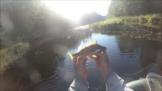 Отчеты о рыбалке на реке саба