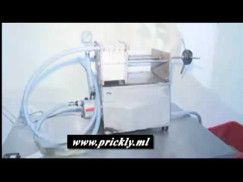 Lyambliya sotto microscopio video
