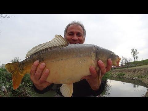 La pesca attraverso Ucraina e una fotografia