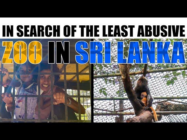 In search of the least abusive zoo in Sri Lanka