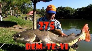 Programa Fishingtur 275 - Pesqueiro Bem-te-vi