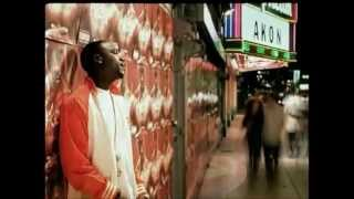 Akon FT Ray J Falling In Love Official Video