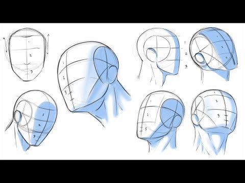 How to Draw Heads - Dividing it Into Thirds