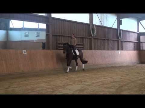 Gymnastik Schultergelenk Popova
