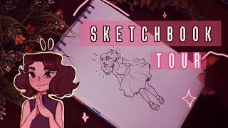 Sketchbook Tour ||✨ 2016 - 2017 🎨