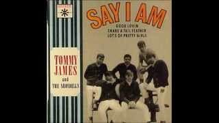 Tommy James & the Shondells - Say I Am