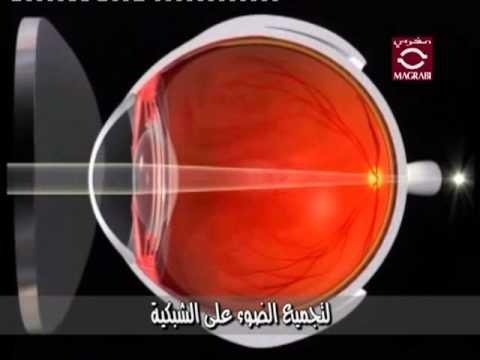 0b15659e0 الدكتور محمد رشاد نقيب