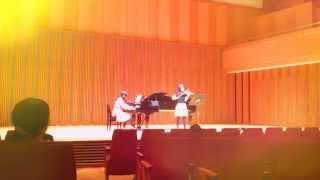 弾いてみたバイオリンとピアノで「風の通り道」を弾いてみたスタジオジブリ