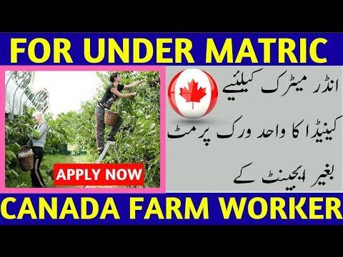 Canada Free Farm Wor