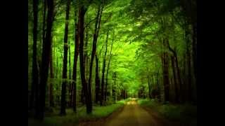 Aron Wright   In The Woods «Кухня» OST