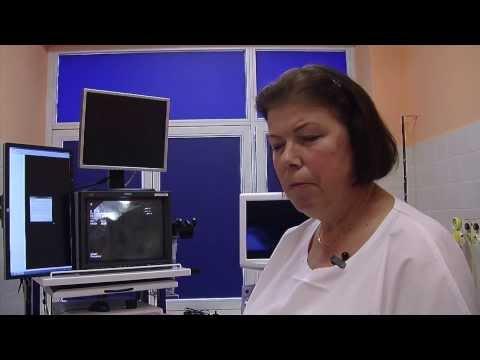 Kastoreum karcinomu prostaty