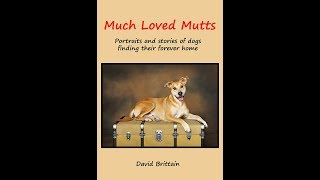 Much Loved Mutts Book