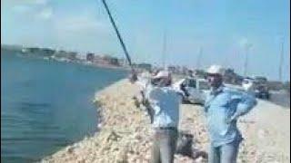 preview picture of video 'صيد اكبر  سمكة قاروص ملاحات برج العرب مش بلطي بس'