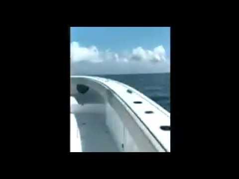 Freeman 42 LR video