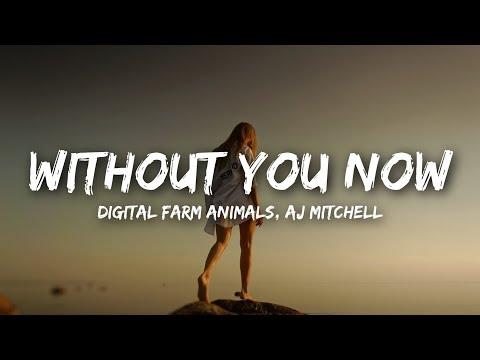 Digital Farm Animals, AJ Mitchell - Without You Now (Lyrics