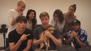 SURPRISE PUPPY PRANK ON ROOMMATES!!