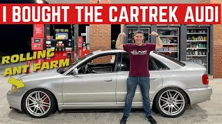 I BOUGHT The ANT INFESTED Audi S4 From Car Trek