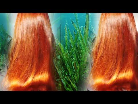 Środki folk dla wzmocnienia włosów kobiet