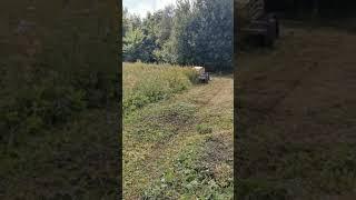 Anders larsen med Hegnsklipper ved Gistrup