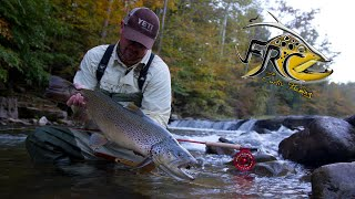 Fly Fishing for Huge Brown Trout in West Virginia