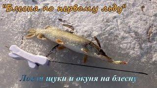 Ловля щуки на блесну зимой со льда
