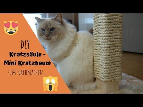 Kratzsäule - Mini Kratzbaum selber bauen |DIY