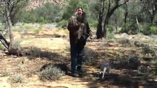 Как поймать кенгуру в московском лесу