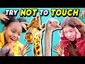 Try Not To Touch Challenge (Ft. A Baby Giraffe)