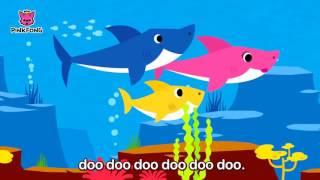 Baby Shark   Original