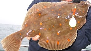 Sea Fishing Rigs - Teaspoon Flasher Rig